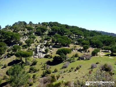 Valle de la Pizarra y los Brajales - Cebreros; findes montes de leon cotos madrid